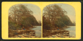 Lake view, Jackson, N.H, from Robert N. Dennis collection of stereoscopic views.png