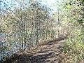 Lambert Lake - panoramio (13).jpg