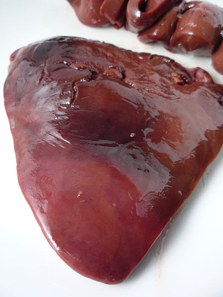 Image Result For Can Heart Worms