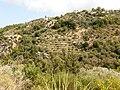 Landschaft auf Ikaria.jpg
