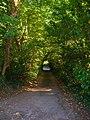 Lane to St Andrew's Church - geograph.org.uk - 984359.jpg