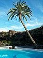 Lanzarote2010 119.jpg