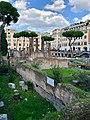 Largo di Torre Argentina (45612283825).jpg