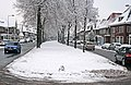 Lasondersingel Enschede in de winter - panoramio.jpg