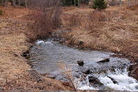 Laurel Run (Huntington Creek) looking upstream.JPG