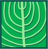 Leaf morphology arcuate