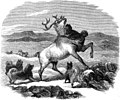 Life with the Esquimaux - 1864 - Volume 1 page 238.jpg