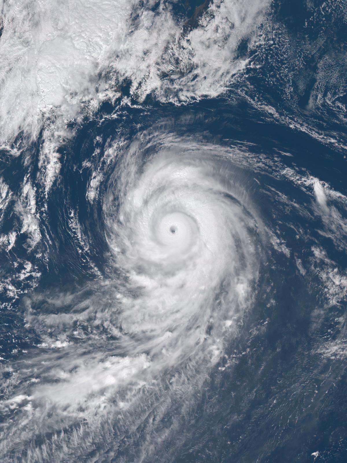 typhoon lionrock 2016 wikipedia