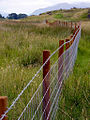 Lismore-fences.jpg