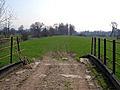 Llwybr yr hen reilffordd. The old railway track. - geograph.org.uk - 385214.jpg