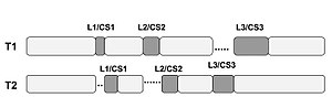 Critical section - Fig 2: Locks and critical sections in multiple threads