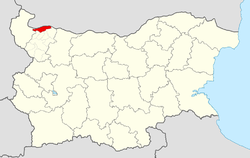 Lom Municipality within Bulgaria and Montana Province.