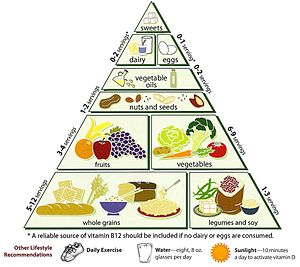 Diet in Hinduism - This is a typical vegetarian food pyramid; however, many Hindus consider eggs to be derived from the animal life cycle, and therefore are non-vegetarian.