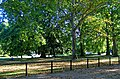London - The Mall - View South into St.James's Park II.jpg