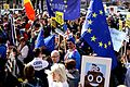 London Brexit pro-EU protest March 25 2017 36.jpg