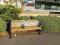 Long shot of the bench (OpenBenches 6124-1).jpg