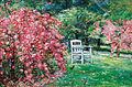 Ludwig Dettmann Garten mit Stuhl.jpg