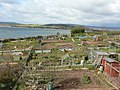 Lympstone allotments - geograph.org.uk - 760565.jpg