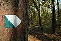 MOs810, WG 2013 21, OChK Baszkow Rochy, trails (3).JPG