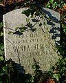 MOs810 WG 55 2016 Pyzdry Forest III (Wanda Heinrich, Stawiszyn cemetery).jpg