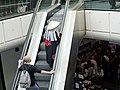 Mang'Azur - 2010 - Escaliers - P1310395.JPG