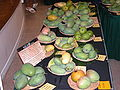 Mango Display1 Asit ftg.jpg