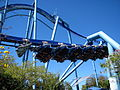 Manta at SeaWorld Orlando 38.jpg