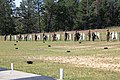 Marines complete live-fire battle-drill training at Fort McCoy 170908-A-OK556-201.jpg