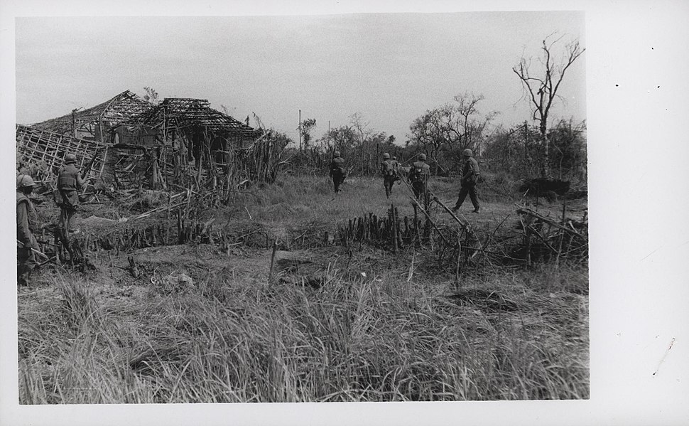 Marines of 2d Battalion, 4th Marines Move Into Dai Do Village, May 1968 (15588235573)