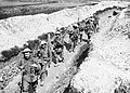Men of the King's Liverpool Regiment carrying barbed wire picket posts along a communication trench near Blairville Wood, 16th April 1916. Q525.jpg