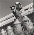Milk carrier Frederick (Fred) Jones delivers full milk cans at Drouin's co-operative milk factory, Drouin, Victoria (6174078402).jpg