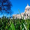 Minnesota State Capitol Lawn (2692279711).jpg