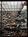 Missiemuseum Steyl-Tegelen, grote zaal, vaste collectie 16.jpg