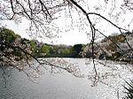 Mitsuike Park01.jpg