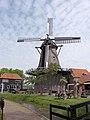 Molen De Traanroeier, Texel (1).jpg