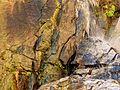 Molino Basin Waterfall - Flickr - treegrow (4).jpg