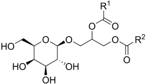Galactolipid - General chemical structure of a monogalactosyl diacylglycerol (MGDG), a prevalent type of galactolipid.  R1 and R2 are fatty chains.