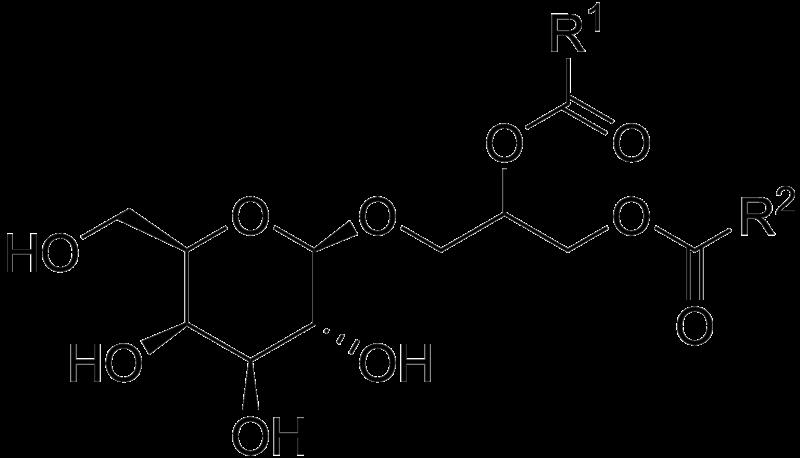File Monogalactosyl Diacylglycerol Wikimedia Commons