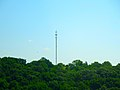 Monopole Cell Tower - panoramio.jpg