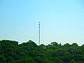 Monopole Cell Tower - panoramio.jpg
