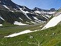 Mont Fortin, Val Veny (45021318384).jpg