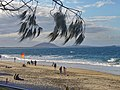 Mooloolaba Beach - panoramio.jpg