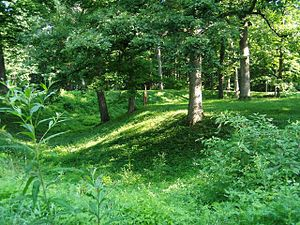 Mounds State Park - Ditch surrounding the Great Mound.