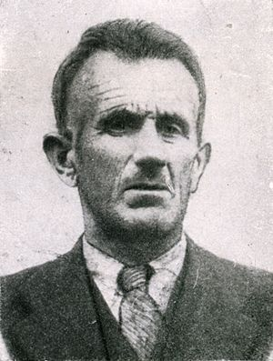 Muhamed Mehmedbašić - Muhamed Mehmedbašić in the interwar period