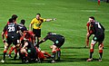Munster vs Scarlets - panoramio (3).jpg