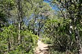 Muntanyes de Begur - panoramio.jpg