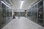 Museum voor Dierkunde 2010PM 0369 21H7455.JPG