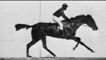 Archivo:Muybridge race horse.webm