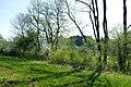 NSG Ithwiesen - Südlicher Teil bei Holzen (13).jpg