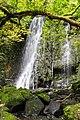 NZ130315 Matai Falls 02.jpg